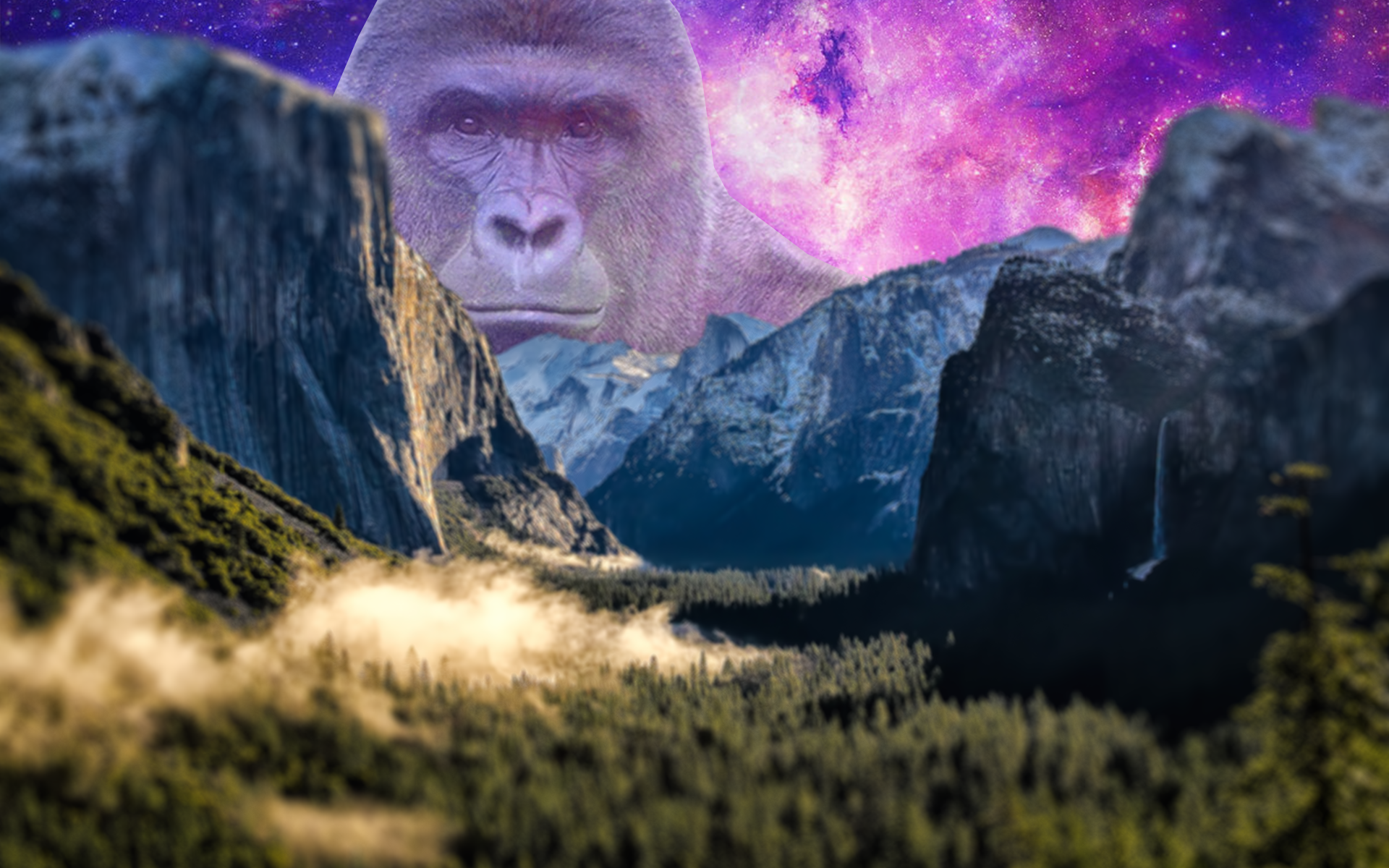 Harambe Over The Mountains Harambe Wallpaper Mountains