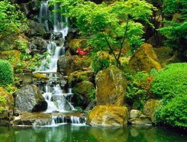 Arte y jardiner a dise o de jardines cascadas for Lagunas artificiales construccion
