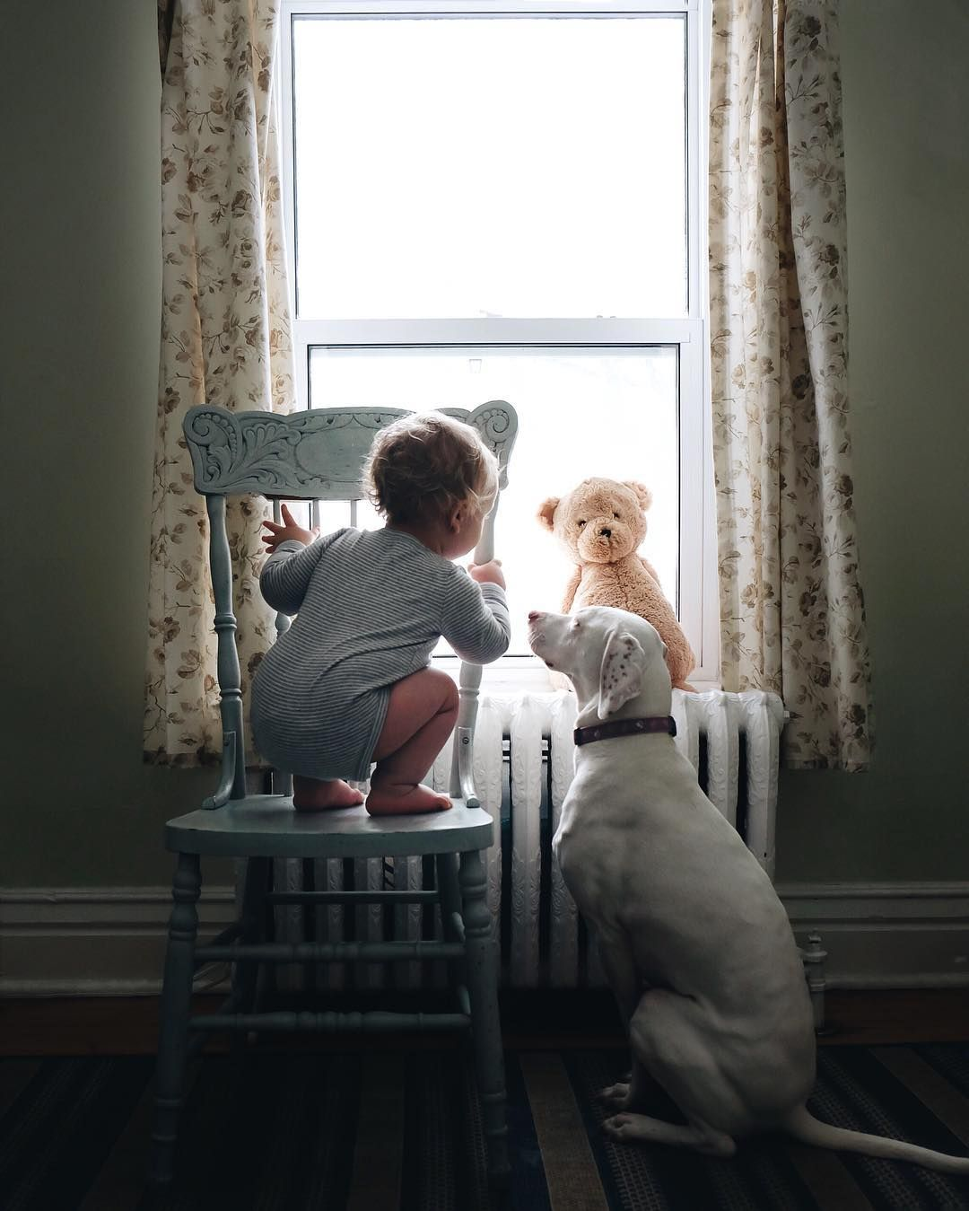 This climbing baby certainly has a vigilant nanny dog ♥