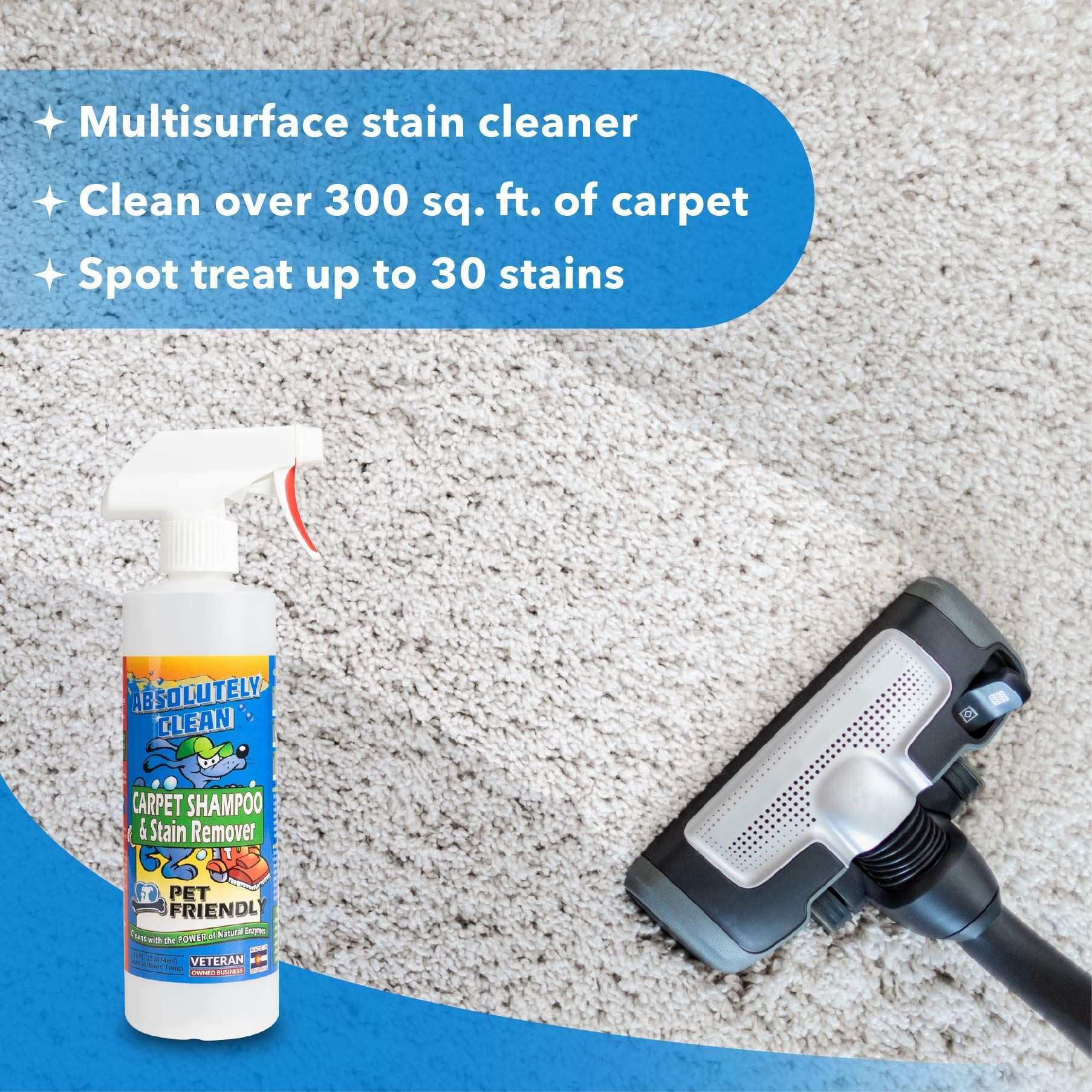 Amazing Carpet Shampoo For Pets Natural Enzymes Remove Most Stains In 60 Seconds Dog And Cat Urine Vomit B In 2020 Pet Odor Stain Removers Cat Urine Carpet Shampoo
