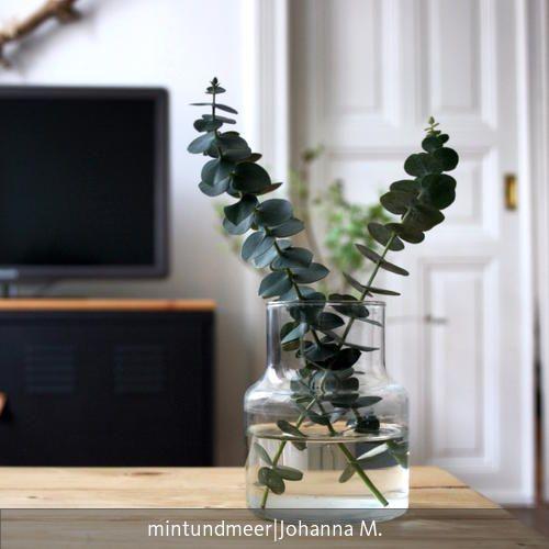 Wohnzimmer Interiors and House - Pflanzen Deko Wohnzimmer