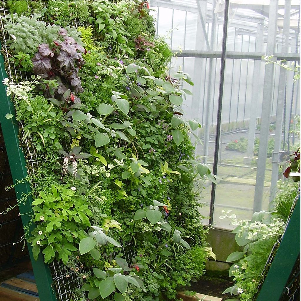 Vertical vegetable garden design ideas - Grow A Vertical Vegetable Garden In A Small Space With Hog Wire