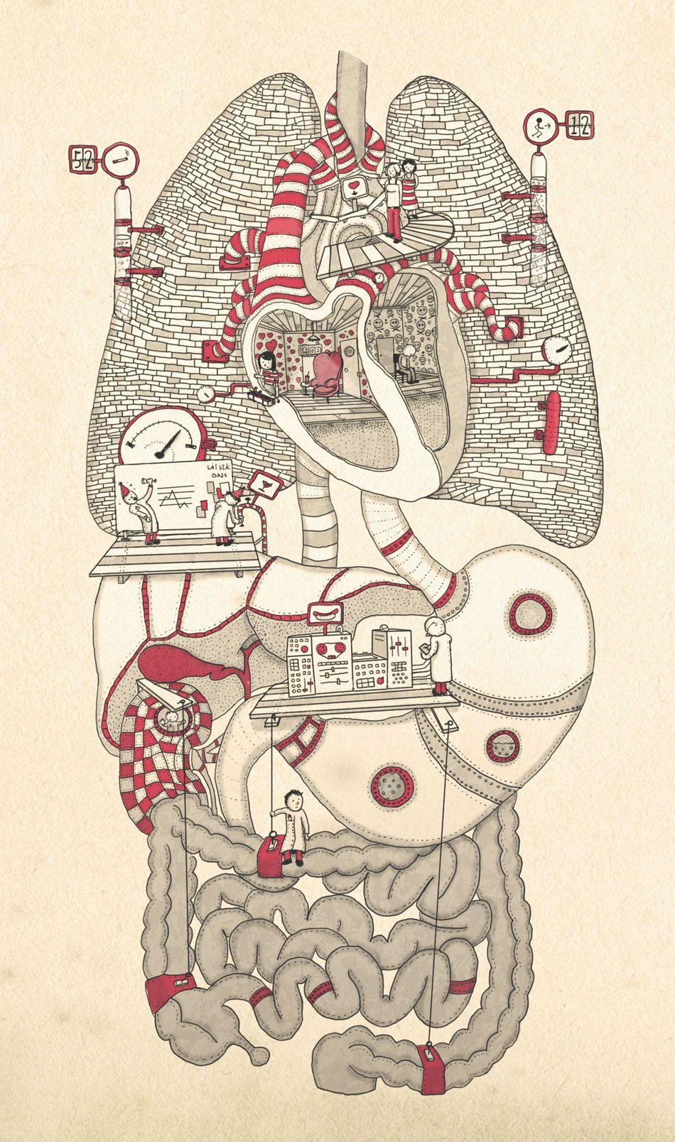 Plano sin fin - Plano Creativo, ahora sin límites.   Anatomía ...