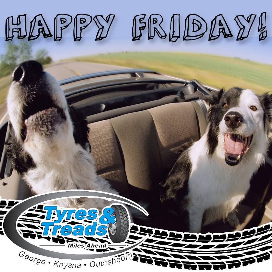 Tyres Treads Would Like To Wish You All A Fantastic And Happy Friday We Hope That You Have A Fun Filled And Safe Weekend Funfriday Dogs Dog Car Funny Dogs