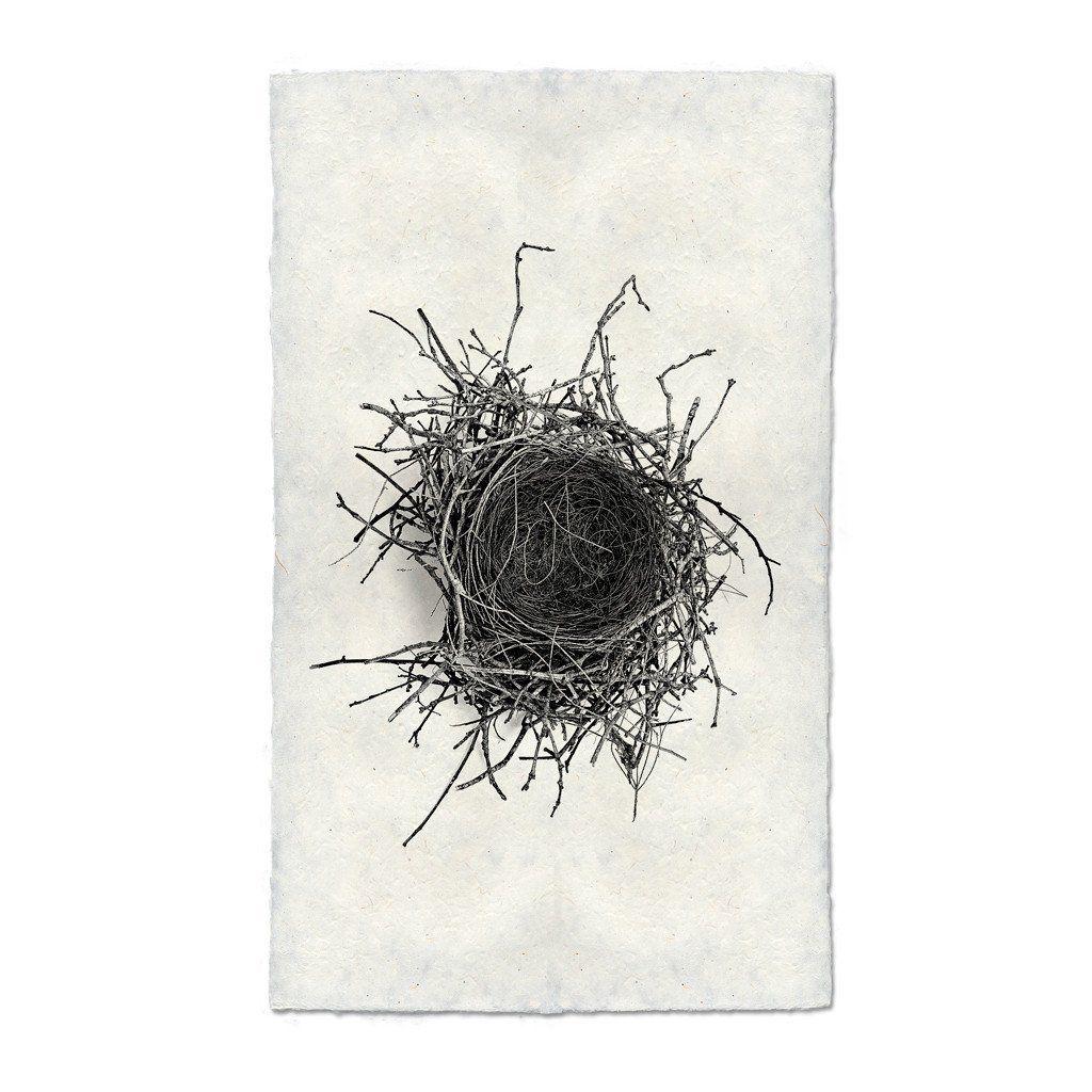 Archival Handmade Paper Nest Study 2 Print