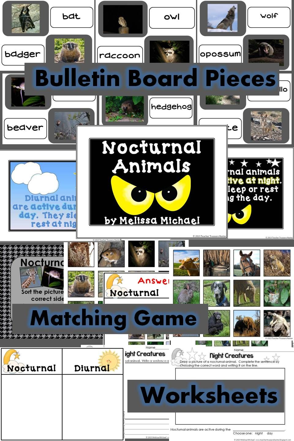 Nocturnal Animals Bulletin Board, Game and worksheets