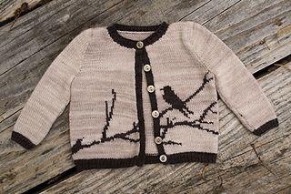 Bird Baby Cardigan Knitting Pattern