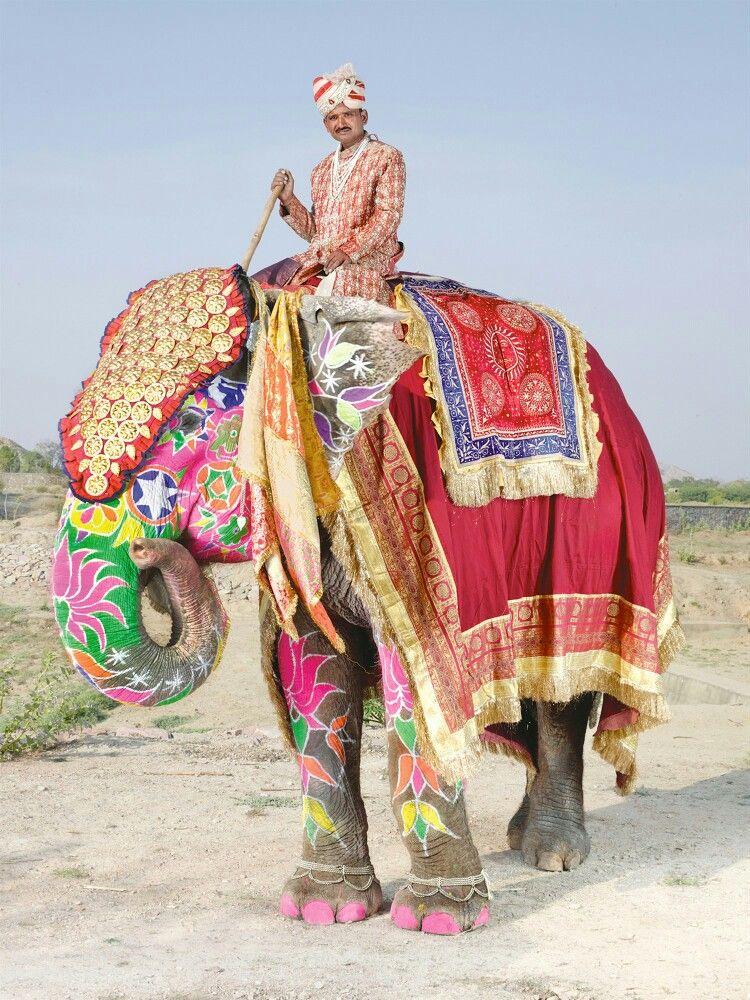 Festival de Jaipur de los Elefantes Pintados en India.