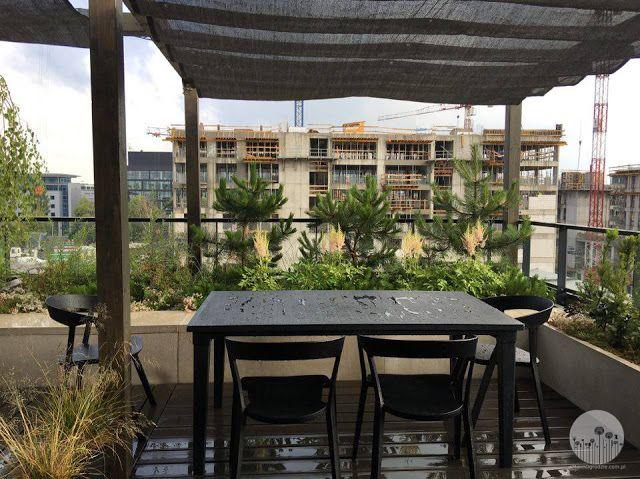 garden terrace small garden design rooftop garden, ogrod na dachu, ogród na tarasie, ogród nowoczesny, modern garden, contemporary garden