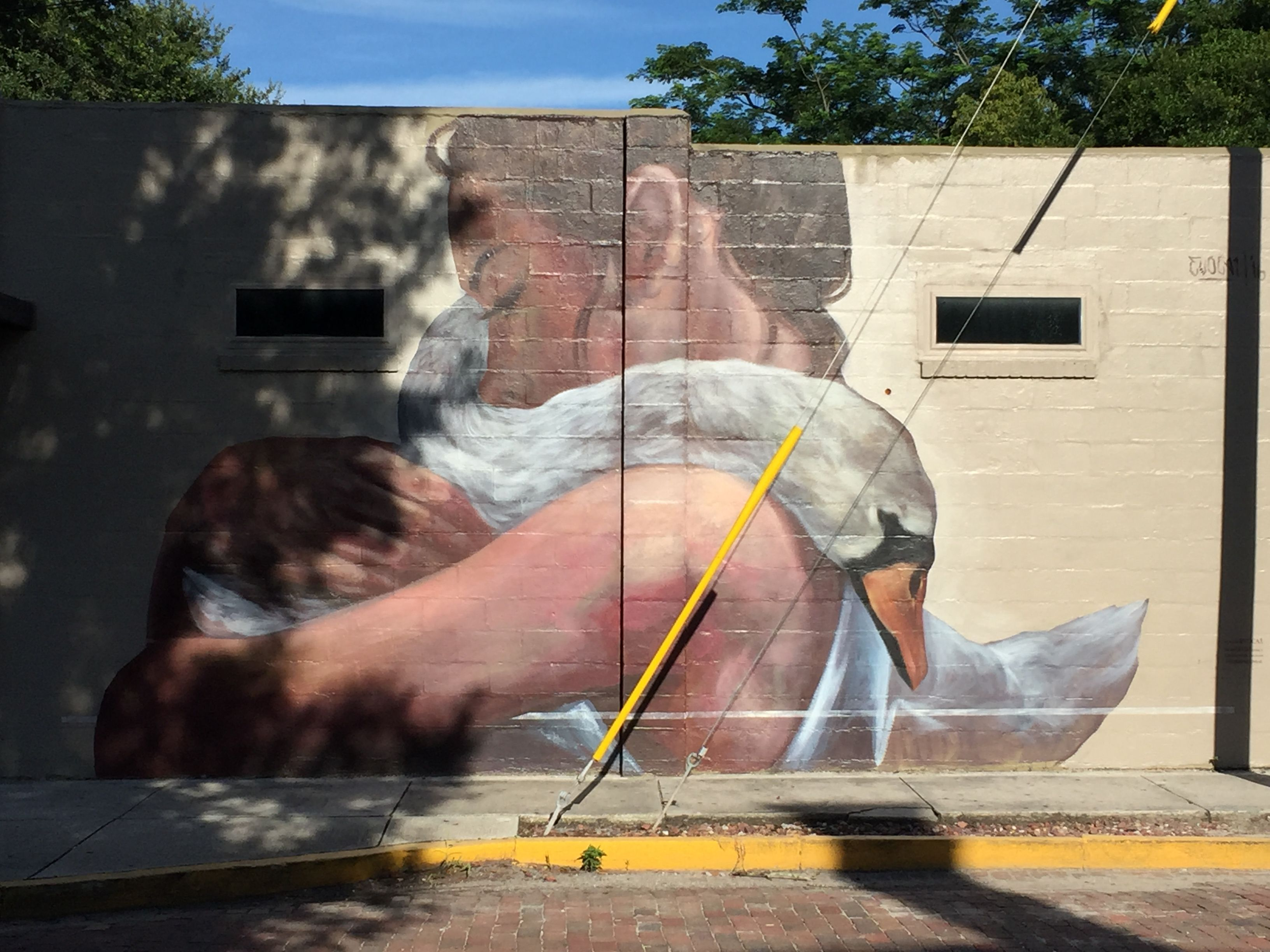 Orlando is known for its swans. This mural in Thorton Park was in ...
