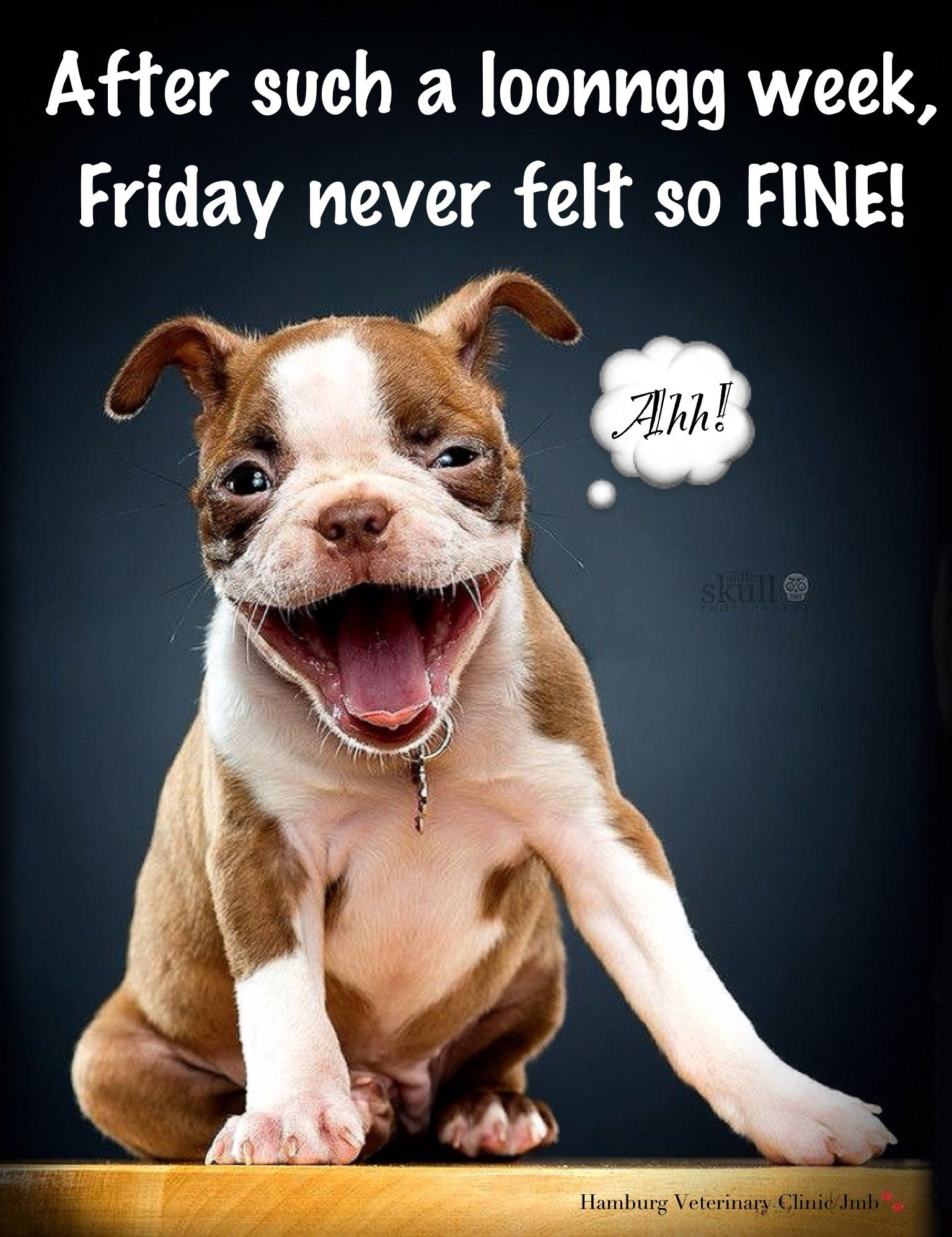 Friday Humor: Smile! Dog Funny  Long week! After such a