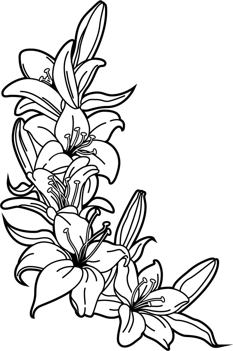 River Vinyls find us on Facebook and eBay  Lilies wall vinyl sticker is part of Lily tattoo -