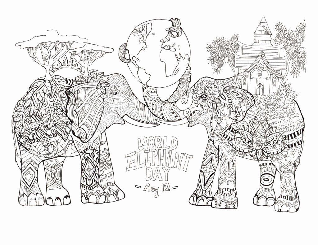 Coloring Book Online For Adults Fresh Baby Wildlife Coloring Pages Beautiful Baby Animal In 2020 Bear Coloring Pages Superhero Coloring Pages Zoo Animal Coloring Pages