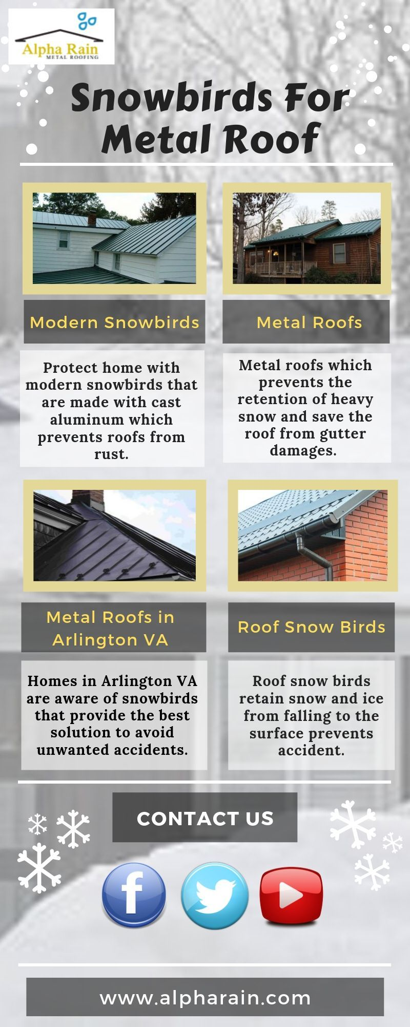 Best Modern Snowbirds That Are Designed By Alpha Rain Metal Roof Roof Metal