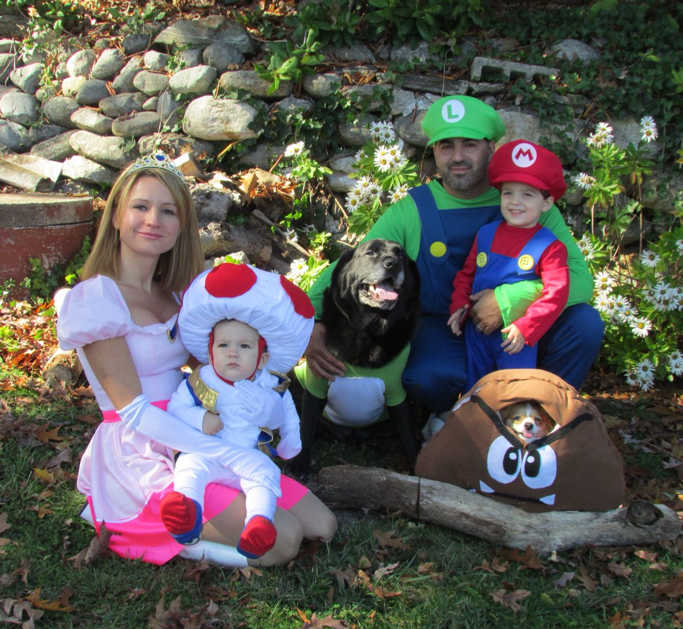 Halloween costumes Family super Mario brothers Dog