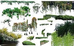 植物绿化psd素材