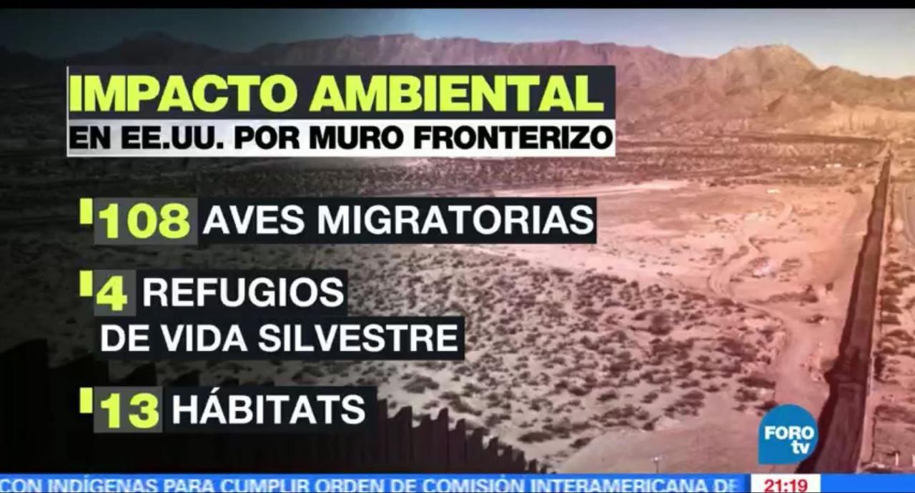 El muro fronterizo que planea construir el presidente de EU, Donald Trump, no solo dividirá las naciones, también afectaría la migración de cientos de especies de animales