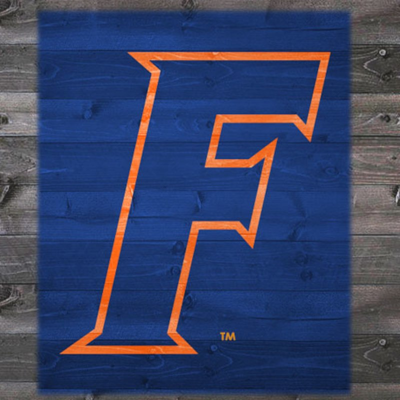 Florida Gators 46 5 X 30 Tailgater Stencil Kit Florida Gators Florida Gator