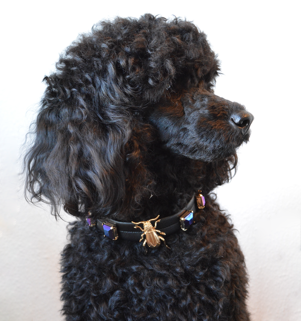 89c6e4073f0a Homemade dogcollar from old necklace. DIY. Poodle. | Louise syr ...