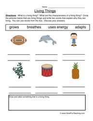 characteristics living things worksheet 1 1 2 3 grade pinterest worksheets free. Black Bedroom Furniture Sets. Home Design Ideas