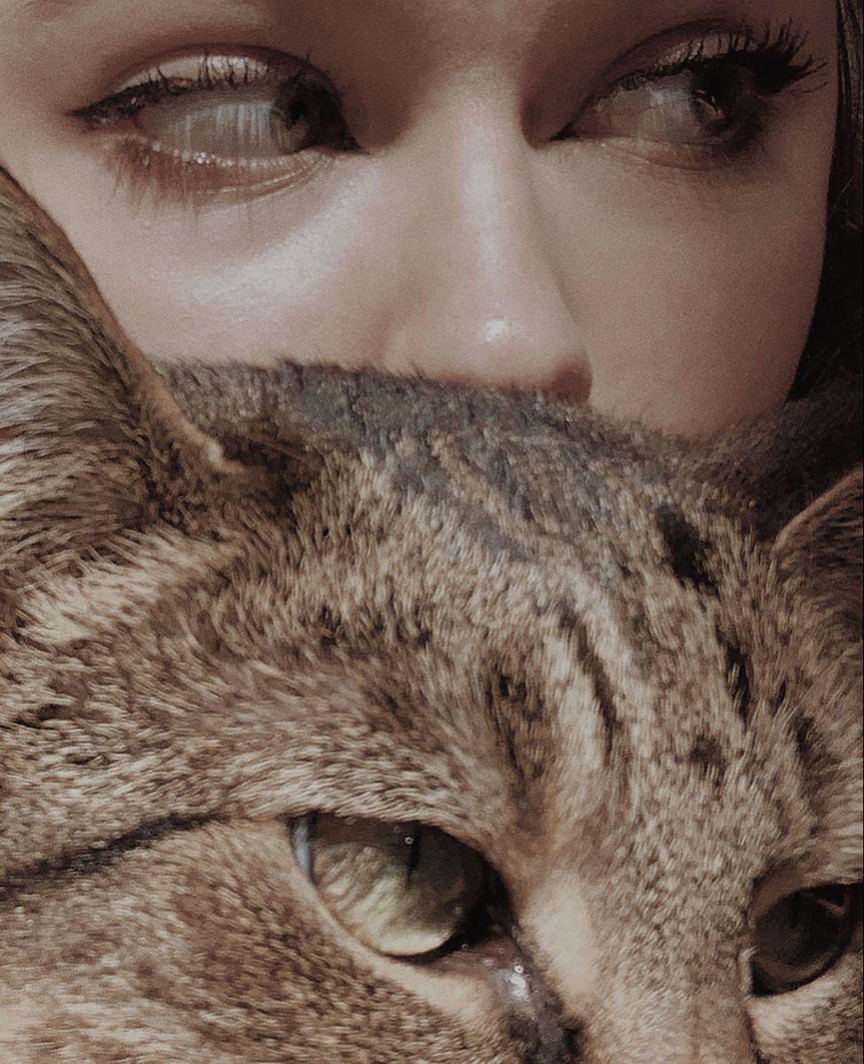 Pin by Sharvari Tadvi on sappho in 2020 Cat aesthetic