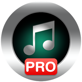 maven music player pro v2 47.38 apk
