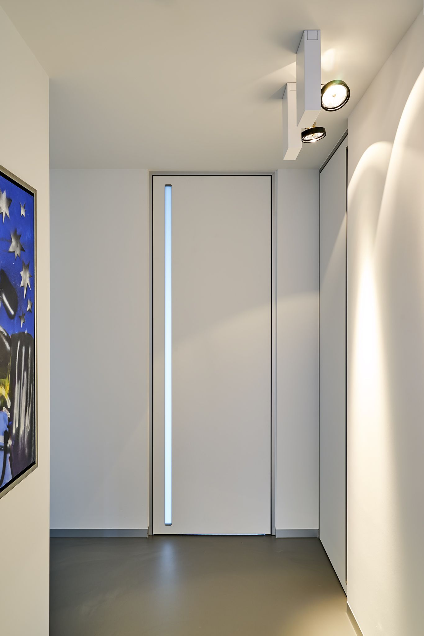 Modern internal door from floor to ceiling with a builtin