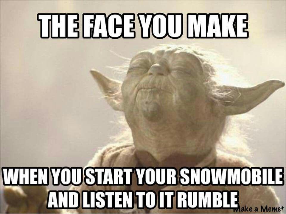 haha yep beer memes funny quotes humor