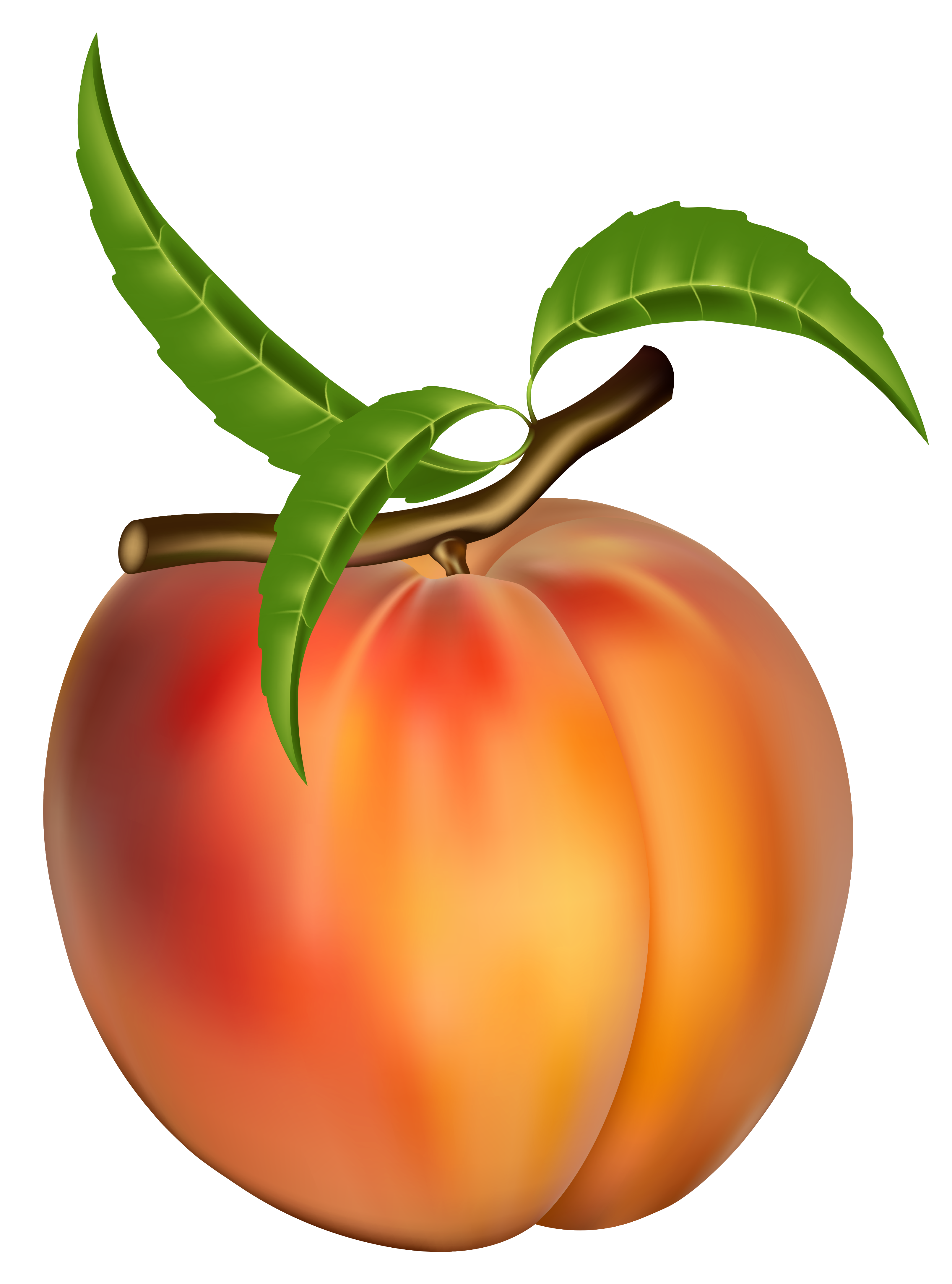 Peach Clipart Free Imagens De Frutas Frutas Desenhos De Frutas