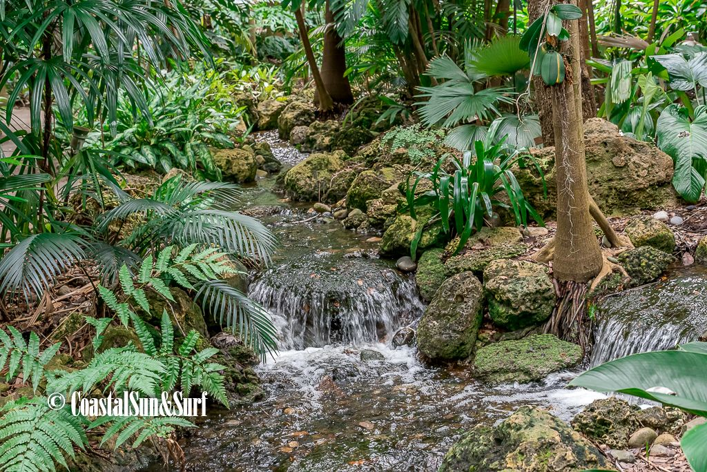 Pond Waterfall Garden Ponds Waterfalls Tropical