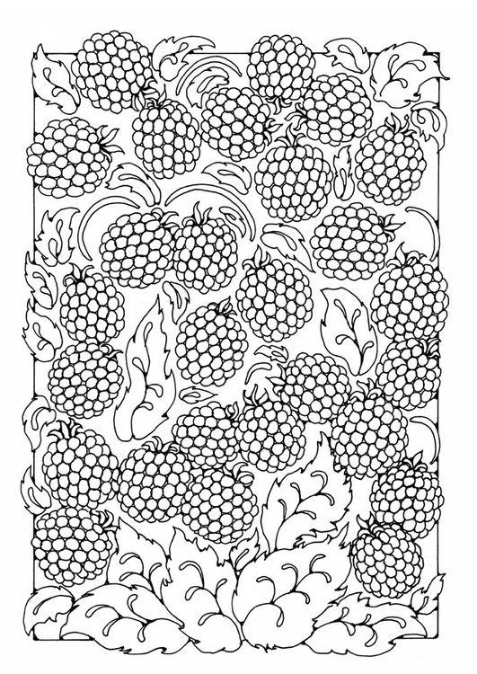 Coloring Page Berries Img 21806 Ausmalbilder Mandala