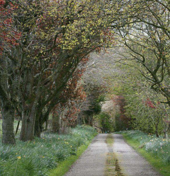 lane leading to J C Rennie & Co yarn makers in Aberdeen, Scotland