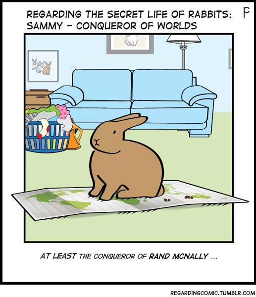 Pin by Katie Rose on Attack of the Bunnies (With images