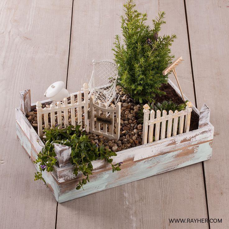 Mini Gardening Kann Auch Als Geschenk Fur Geld Verwendet Werden Diy Garten Etli Yaprakli Bitki Bahcesi Minyatur Bahceler Ahir Ahsap El Sanatlari