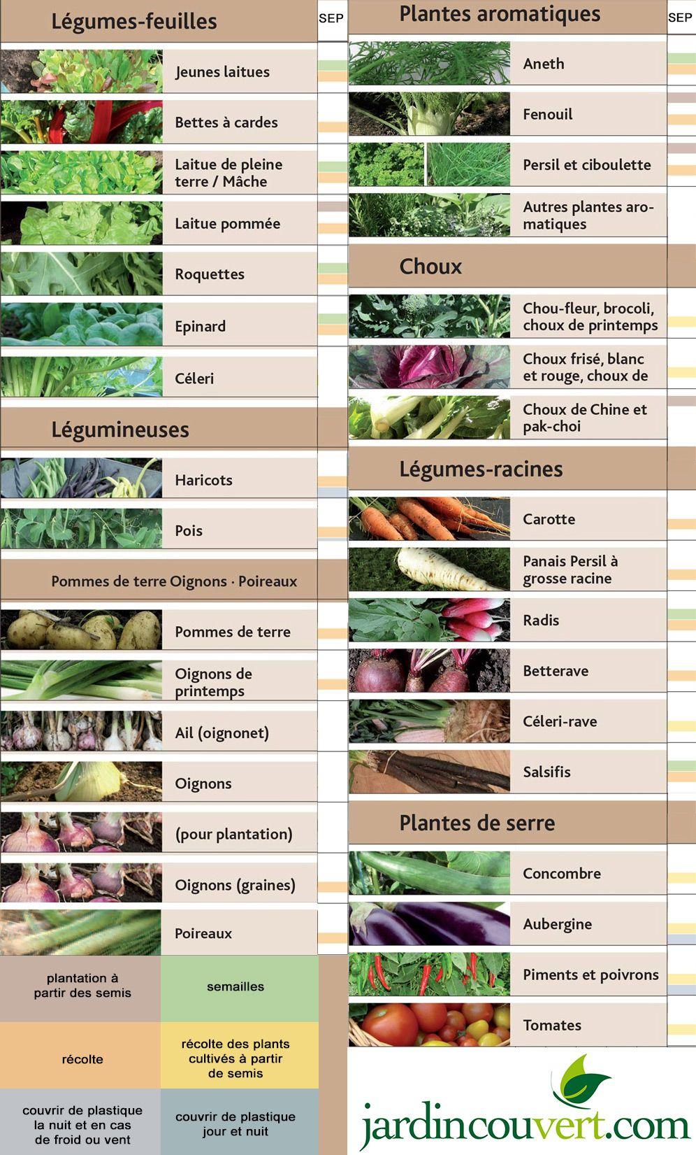 100 Fantastique Concepts Planter Au Jardin En Septembre