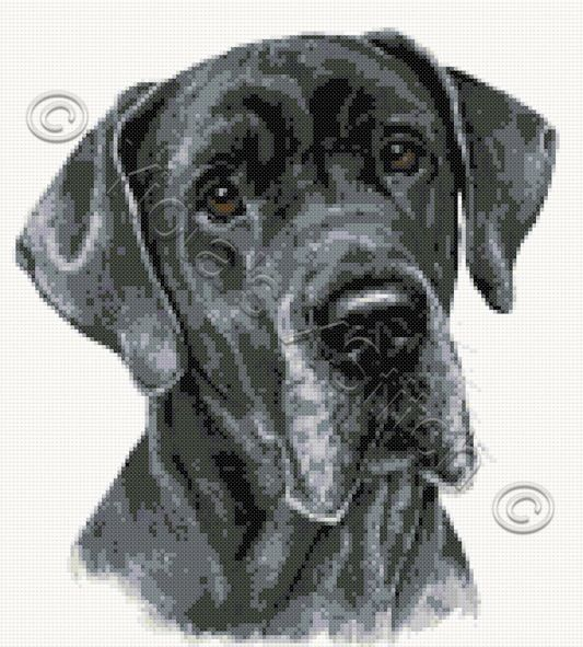 Great Dane No2 Cross Stitch Kit Or Pattern Yiotas Xstitch