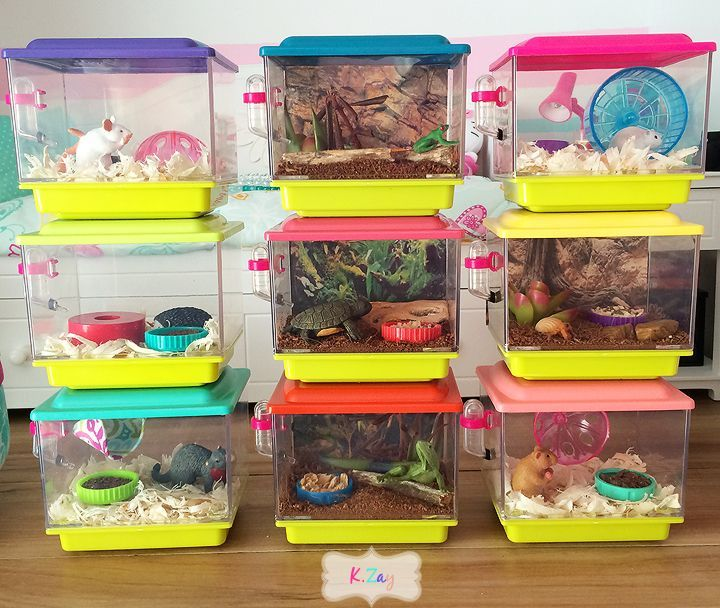 This is the cutest craft for our american girl dolls! make these adorable American girl pet cages #americandolls