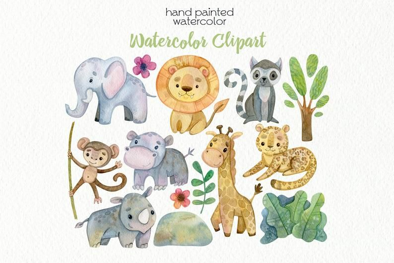 Watercolor Jungle Animals Tropical Animal Clipart Cute Zoo Digital Png Files Instant Download Animal Clipart Jungle Animals Tropical Animals