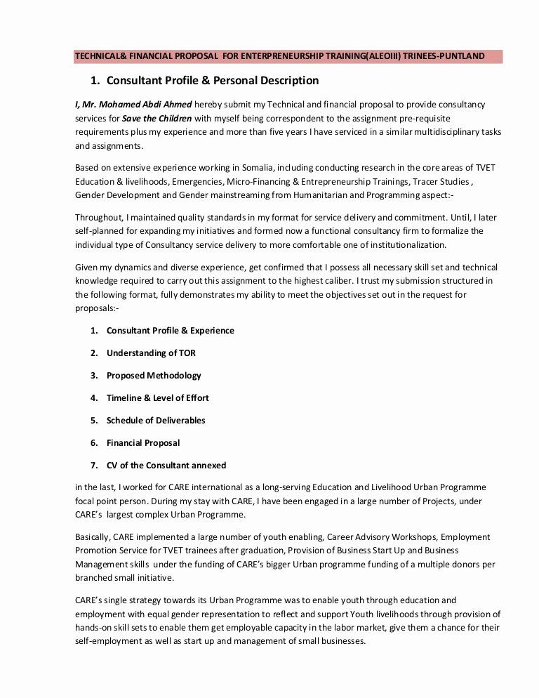 25 Consulting Proposal Sample Pdf In 2020 Technical Proposal