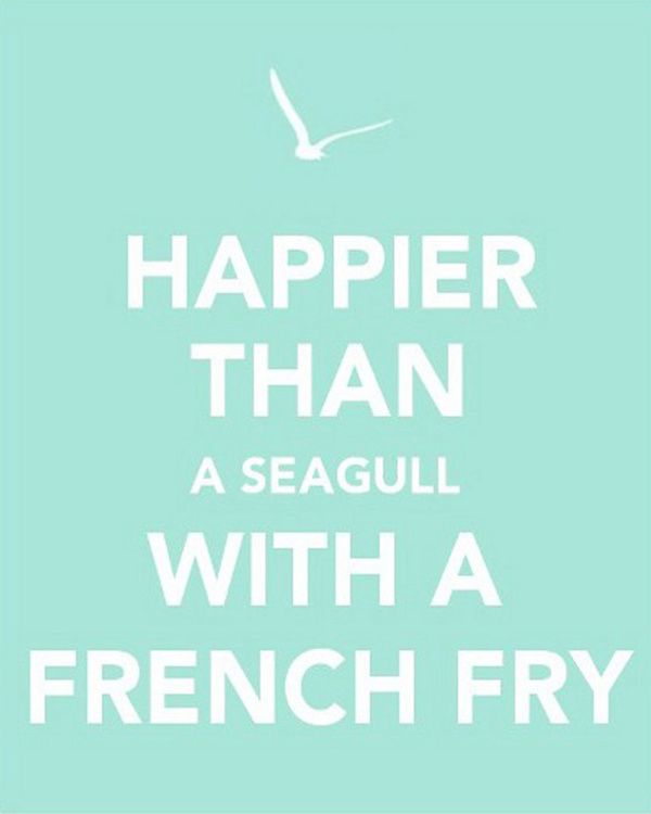 Happier Than A Seagull With A French Fry Beach Instagram Captions Good Quotes For Instagram Summer Captions