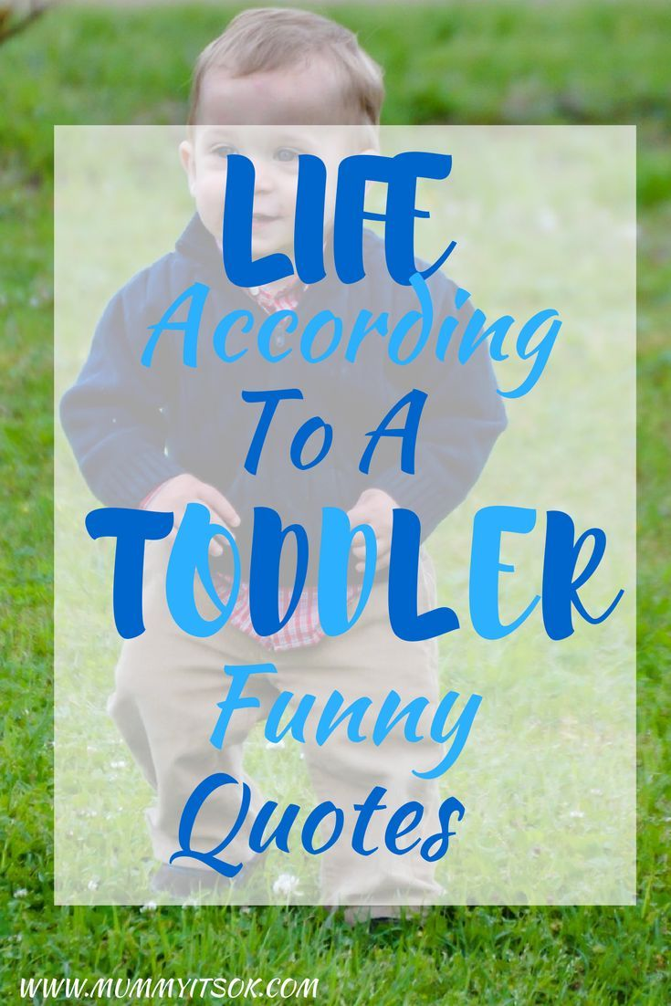 Toddler Quotes Life According To A Toddler  Funny Toddler Quotes  Funny Toddler