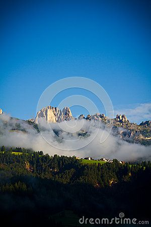 Vertical view with fog shrouds fur-trees in the Val di Fassa wood, Dolomites mountains (Alps), Italy
