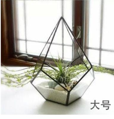 2015 Hot Selling In Australia Geometric Glass Plant Terrarium