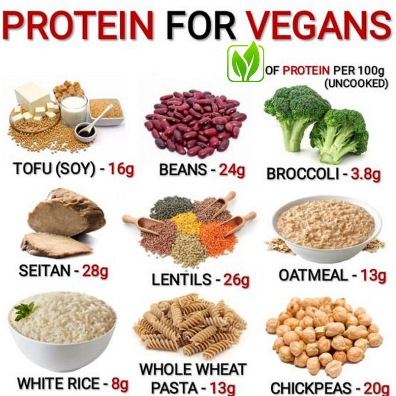 Vegan Protein per 100g Plant Based Sources de