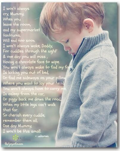 Cherish Every Cuddle Baby Quotes I Love My Son Son Quotes