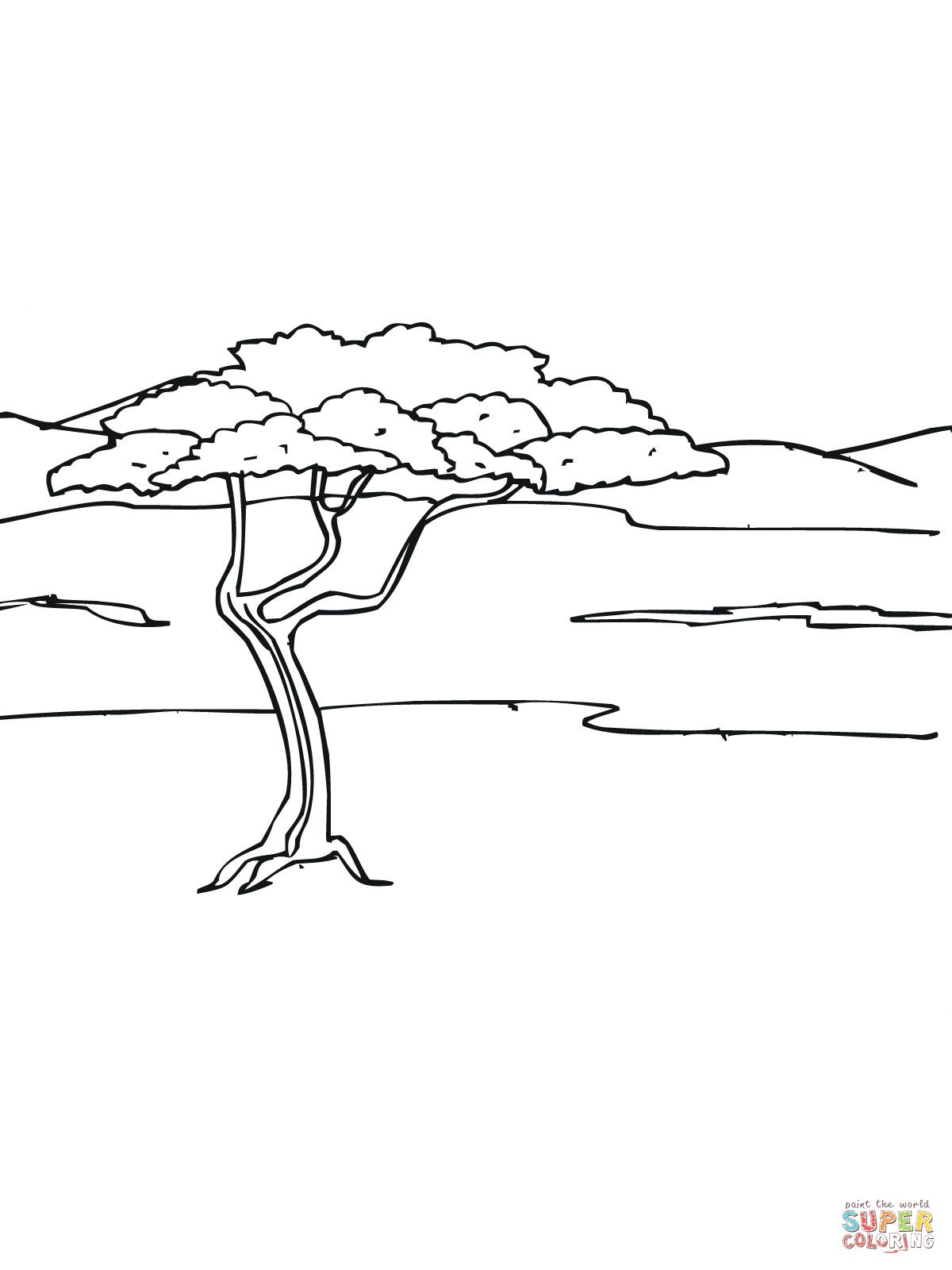 Acacia Tree In Savanna Coloring Page Jpg 1200 1600 Animal