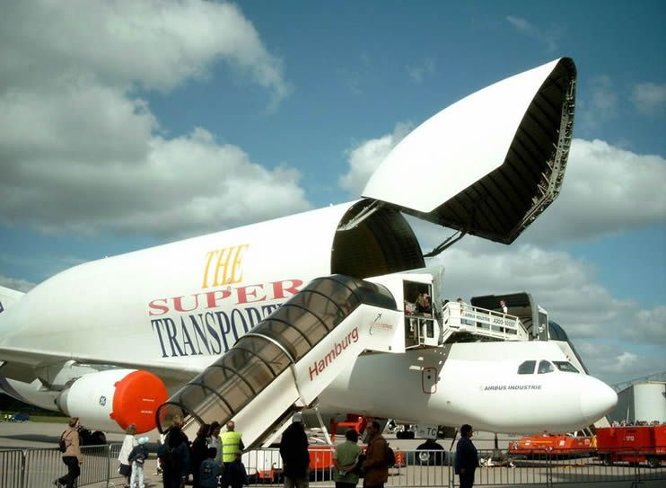 Airbus Beluga Transporter Und Flugzeug