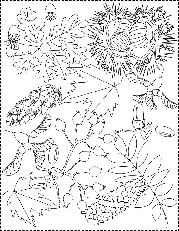 nicole's free coloring pages autumn princess  free