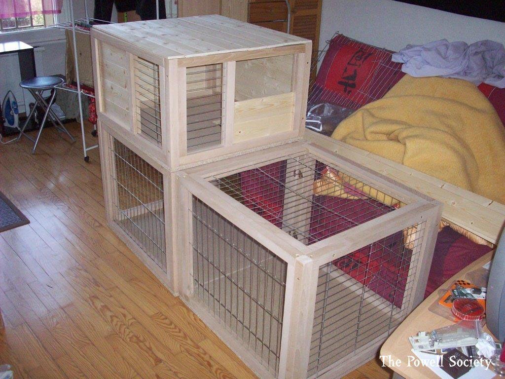 clapier d 39 int rieur pour lapin 4 animaux diy pinterest clapiers lapin et int rieur. Black Bedroom Furniture Sets. Home Design Ideas