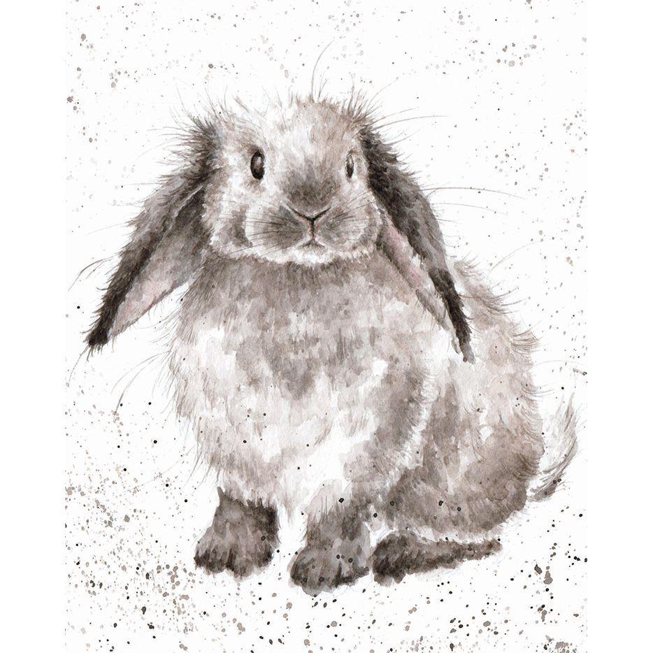 Acs020 rosie wrendale designs birthday pinterest rosie rabbit card by hannah dale for wrendale designs kristyandbryce Gallery